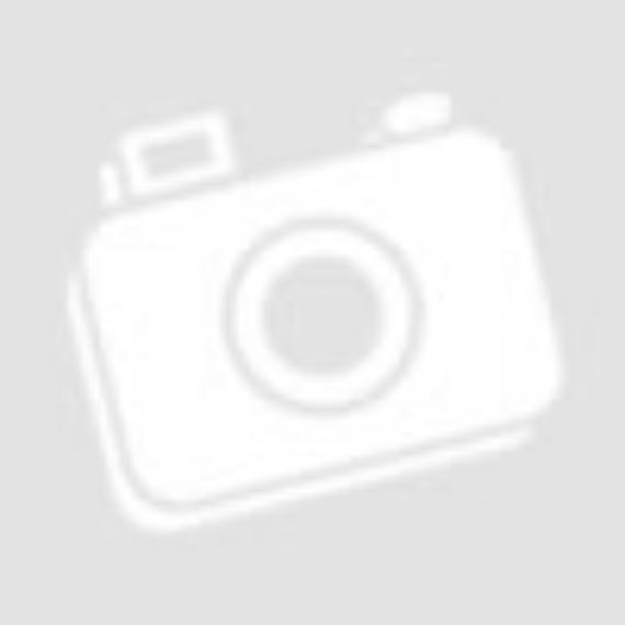 Jack russel gazdi - Bögre