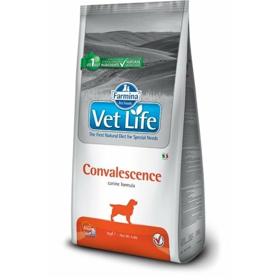 VET LIFE DOG CONVALESCENCE 2KG