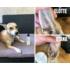Kép 3/5 - Sheila Fül és bőrredő tisztító folyadék - Mandulaolajjal és B5-provitaminnal