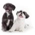 Kép 4/4 - Sheila Happy Dogz Szőrbontó és Ápoló Balzsam