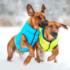 Kép 5/5 - AiryVest kutyaruha kifordítható, S 35,narancs-zöld